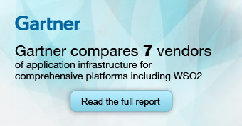 Gartner Compares Vendors of Comprehensive Application Infrastructure Suites